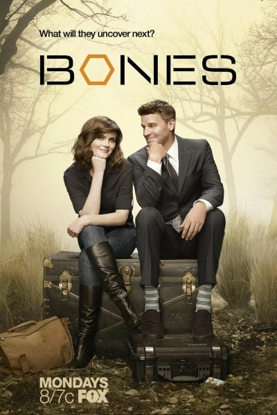 Caratula, cartel, poster o portada de Bones